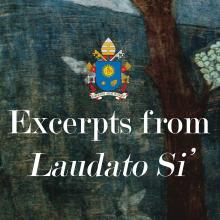 Excerpts from Laudato Si'